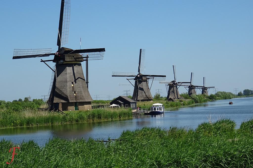 Dutch Apartments