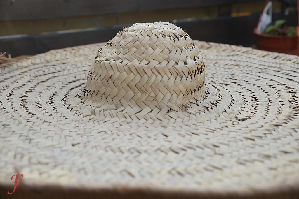 Fulani Herder's Sombrero