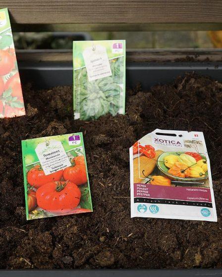 Seed Sowing Season Begins