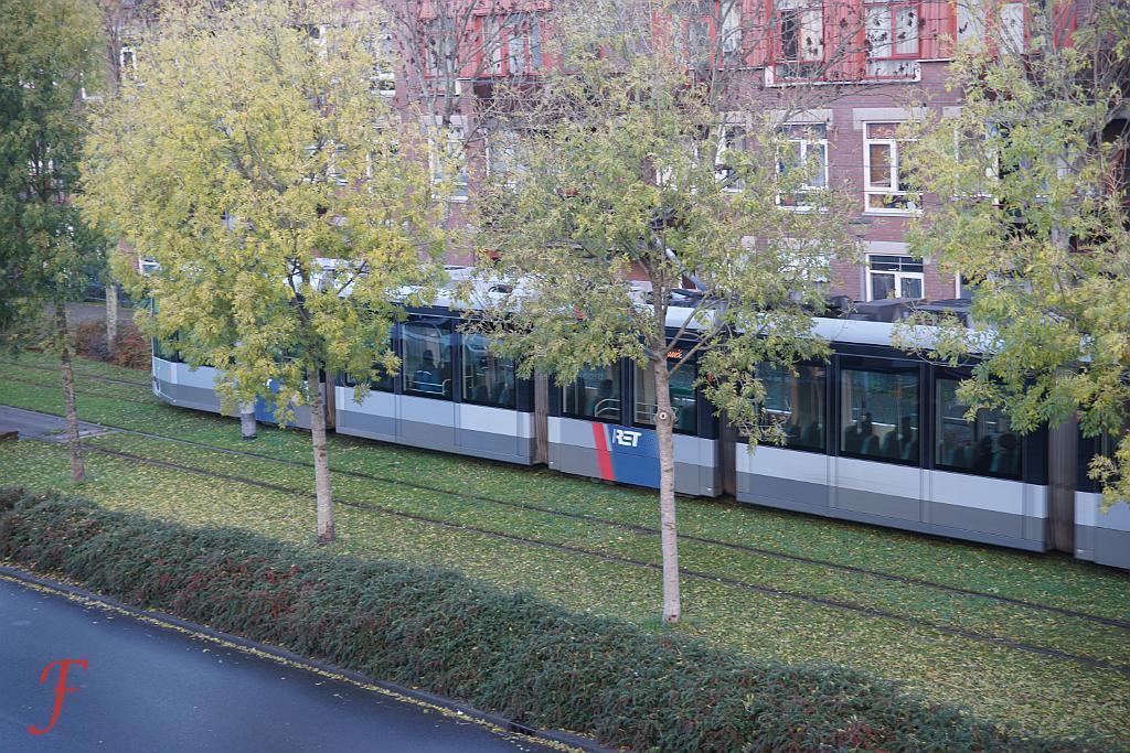 The shy tram